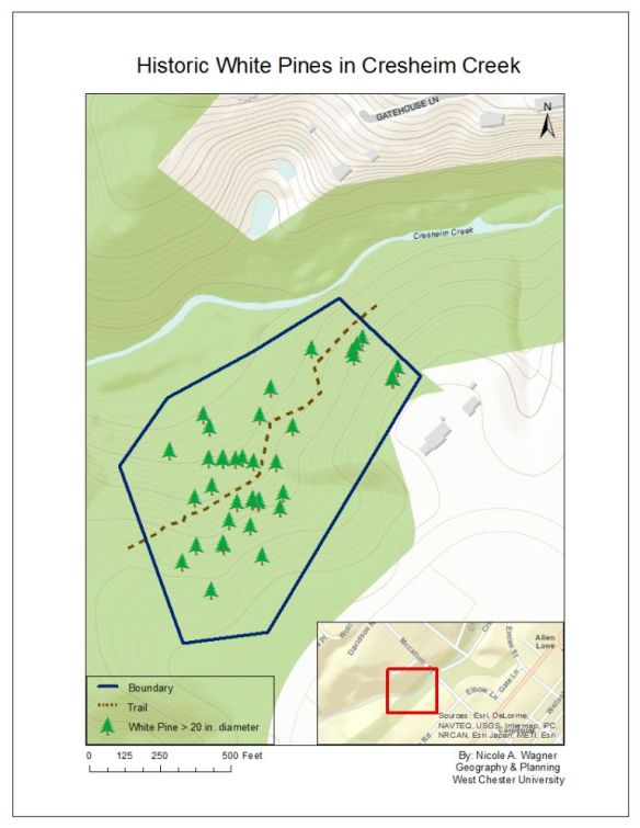 White pines of Cresheim Creek_map